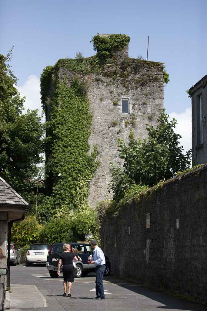 Kildare Castle Co Kildare