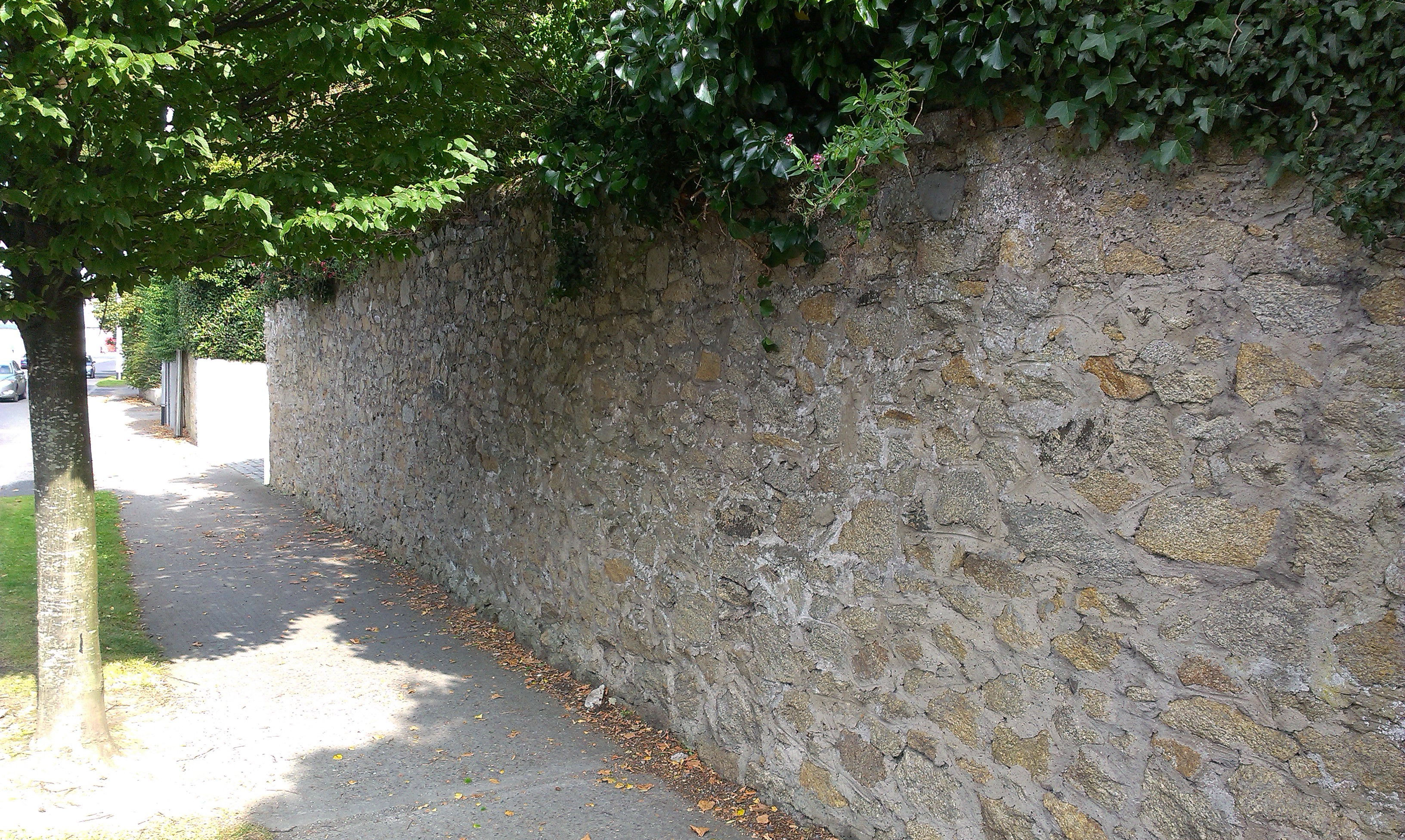 Mount Merrion House The Demesne Wall
